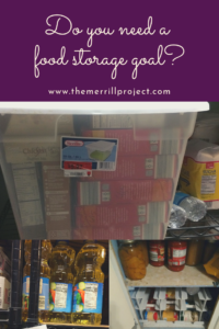 Chatting with so many moms who are trying to figure out food storage so many of you don't have a food storage goal! This is a huge problem and here's why